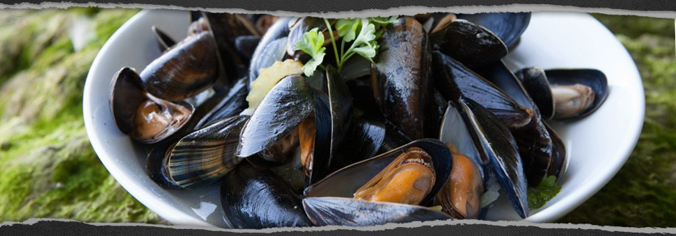 banner-classic-steamed-mussels